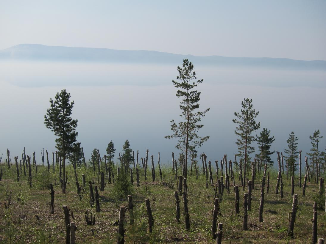 Тайны водоёмов. Жигулёвское море.