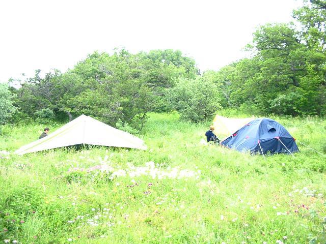 Лагерь другого мира. Это не палатки - это планеры, которые днем парят в солнечном свете, а ночью их поднимает свет звезд. Это наш аэродром, наши техники внимательно следят за тем, чтобы все работало без сбоев. Крым, 2004 год